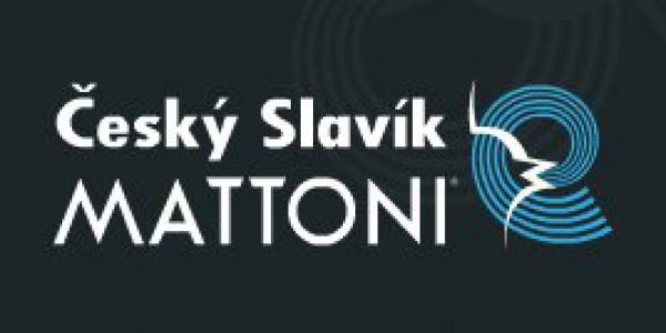 Český Slavík